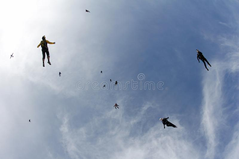 Skydiving. A flock of skydivers is in the blue sky. royalty free stock photography