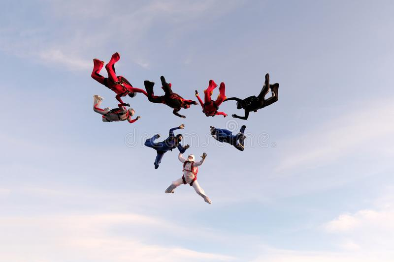 Formation skydiving in the sunset sky. Skydiving. A group of skydivers is falling in the sky royalty free stock image
