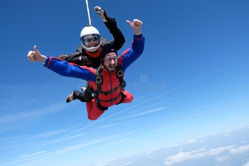 Skydiving het achter elkaar Twee gelukkige mensen zijn in de hemel stock afbeelding