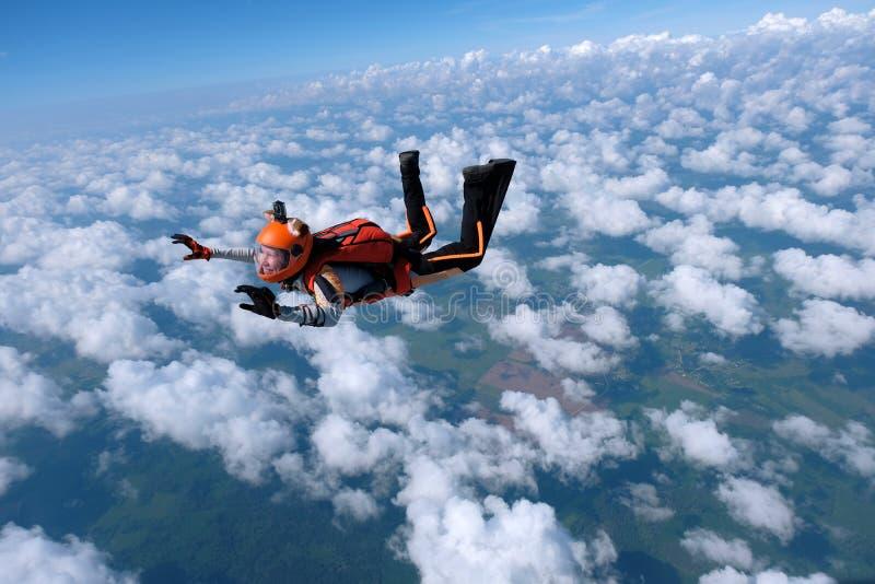 skydiving A menina vestida como uma raposa voa no c?u imagem de stock