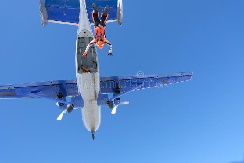 skydiving A menina vestida como uma raposa voa no c?u foto de stock royalty free