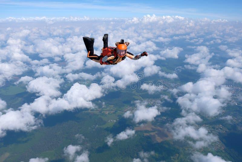 skydiving A menina vestida como uma raposa voa no c?u fotografia de stock royalty free