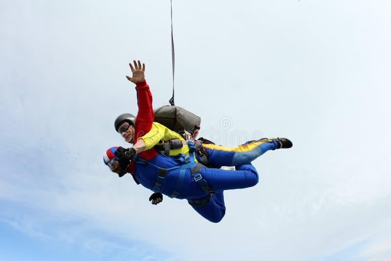 skydiving Salto in tandem Istruttore e passeggero indiano fotografie stock libere da diritti