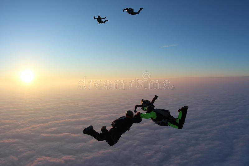 Skydiving. Sunset jump. Skydivers are above pink clouds. Sunset jump. Skydivers are falling above pink clouds. Three skydivers hold each other another skydivers royalty free stock images
