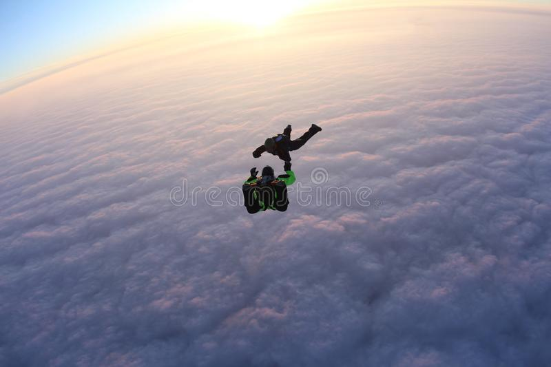 Skydiving. Sunset jump. Skydivers are above pink clouds. Sunset jump. Two skydivers are falling above pink clouds royalty free stock photo