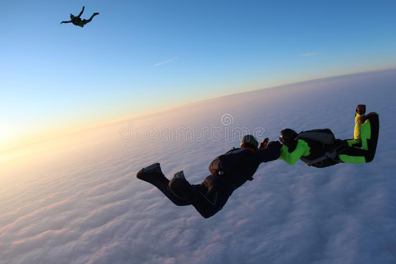 Skydiving. Sunset jump. Skydivers are above pink clouds. Sunset jump. Two skydivers are falling above pink clouds. They hold each other. Third skydiver is royalty free stock images