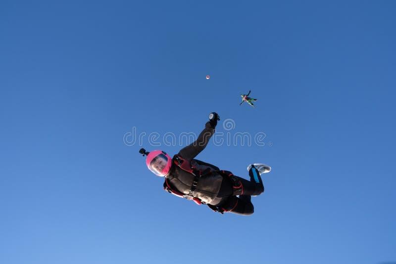 skydiving Två skydivers faller i den blåa himlen royaltyfri fotografi