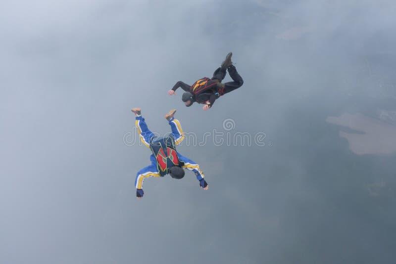 skydiving Tv? skydivers ?r flyingin himlen arkivbilder