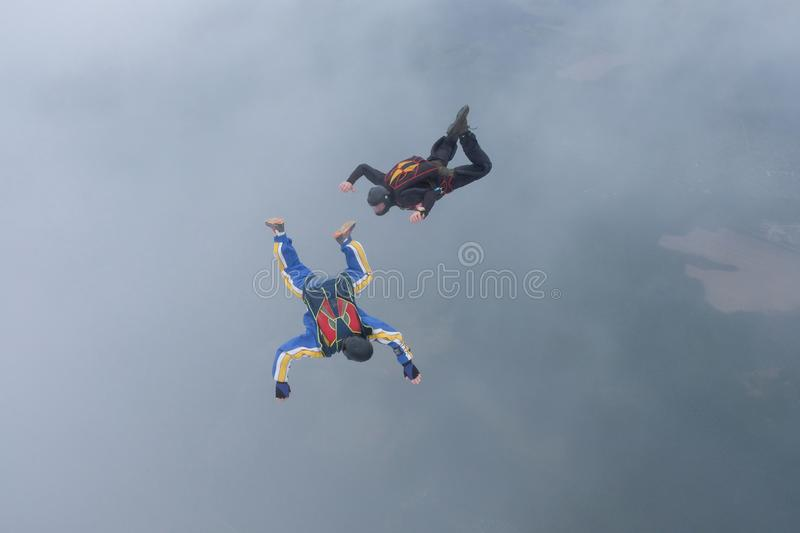 Skydiving. Two skydivers are flyingin the sky. Skydiving. Two skydivers are flying in the sky. White clouds are in the background stock images