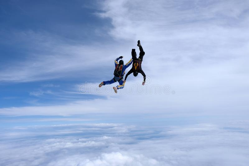 Skydiving. Two skydivers are flyingin the sky. Skydiving. Two skydivers are flying in the sky. White clouds and blue sky are in the background royalty free stock image
