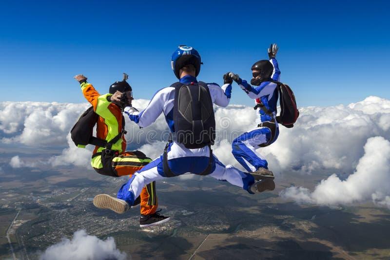 Skydivingsfoto. royalty-vrije stock afbeeldingen