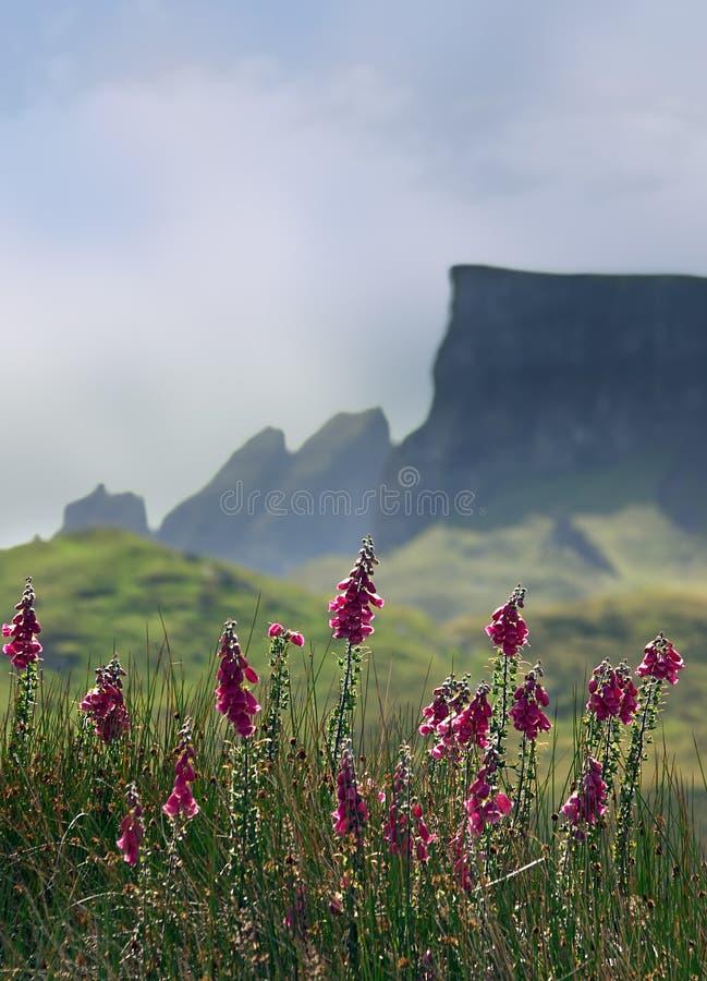 Skye mountains stock photos