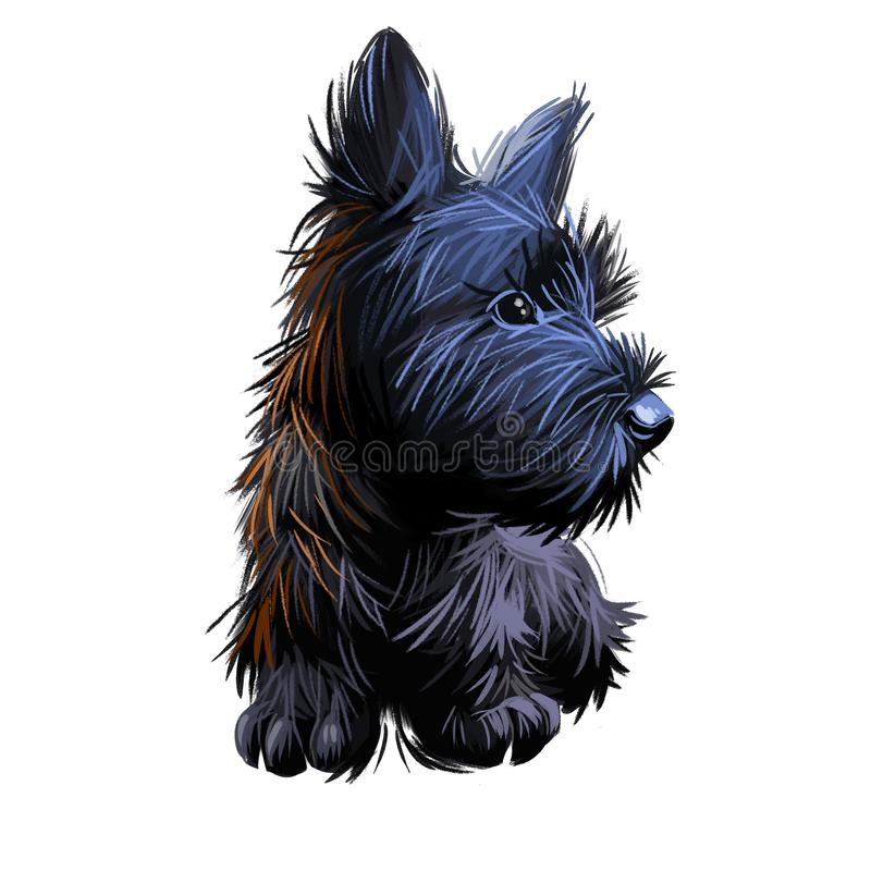 Skye Terrier lap dog tiny pet of small size digital art. Puppy looking in distance breeding domestic animal closeup watercolor. Portrait, isolated muzzle of stock illustration