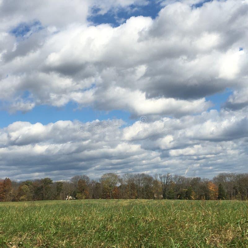 Skyen och sätter in royaltyfria bilder