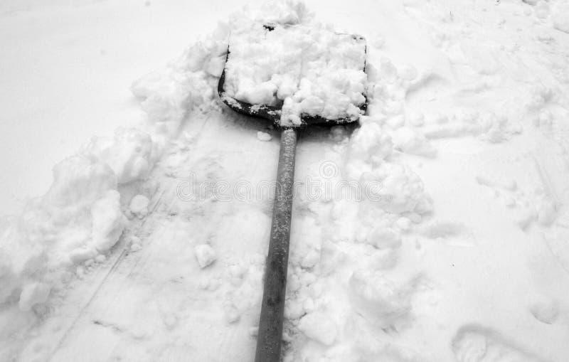 Skyfflar för snöborttagning mycket av ny snö royaltyfri fotografi