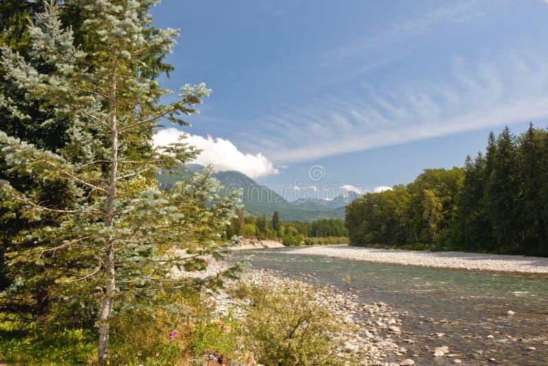 skykomish реки стоковое изображение