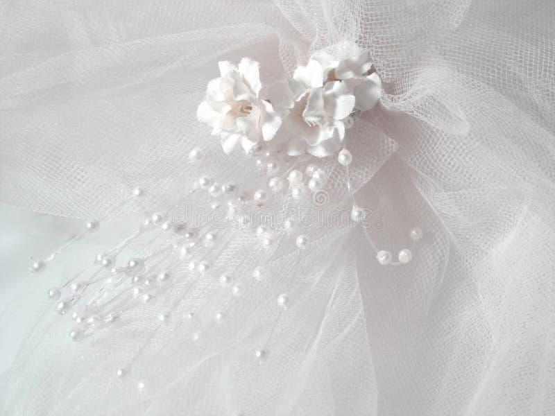 skyla bröllop royaltyfria foton