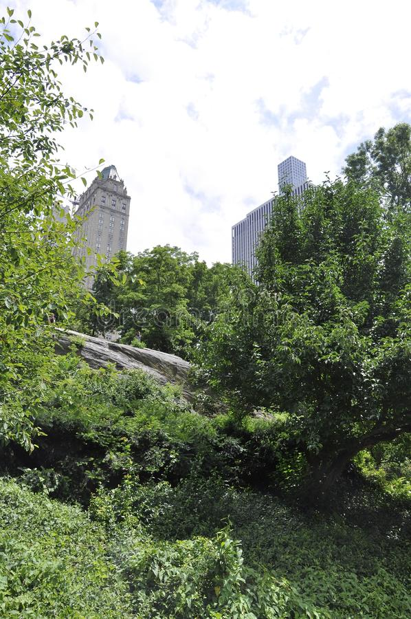 Skyline from Central Park in Midtown Manhattan from New York City in United States. On 1st July 2017 stock image