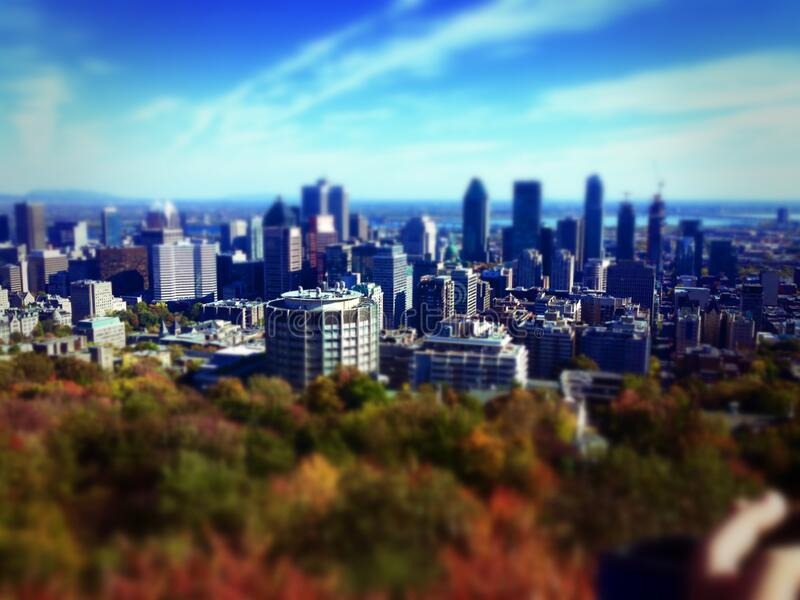 Skyline of city over fall foliage royalty free stock photo