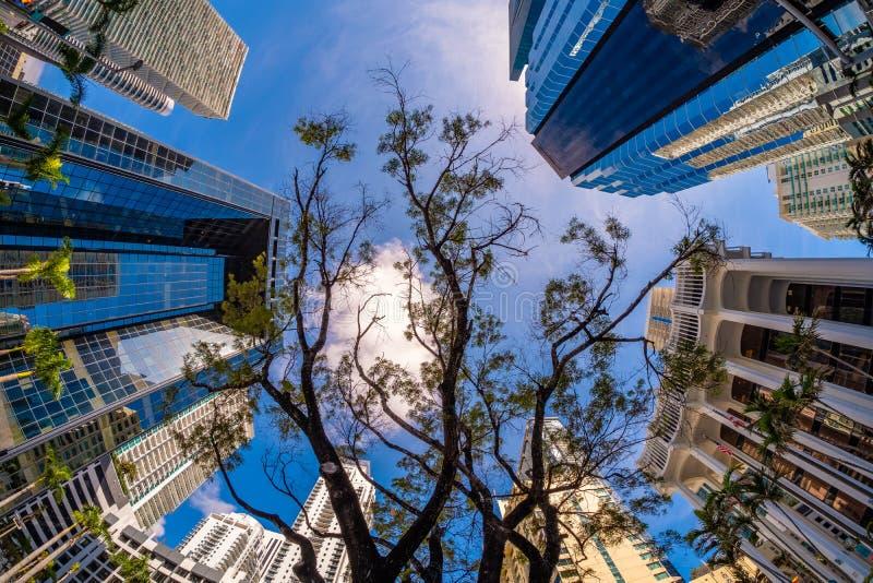 Skyline da baixa de Miami foto de stock royalty free
