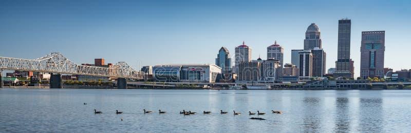 Skyline da cidade de Louisville, Kentucky imagem de stock royalty free