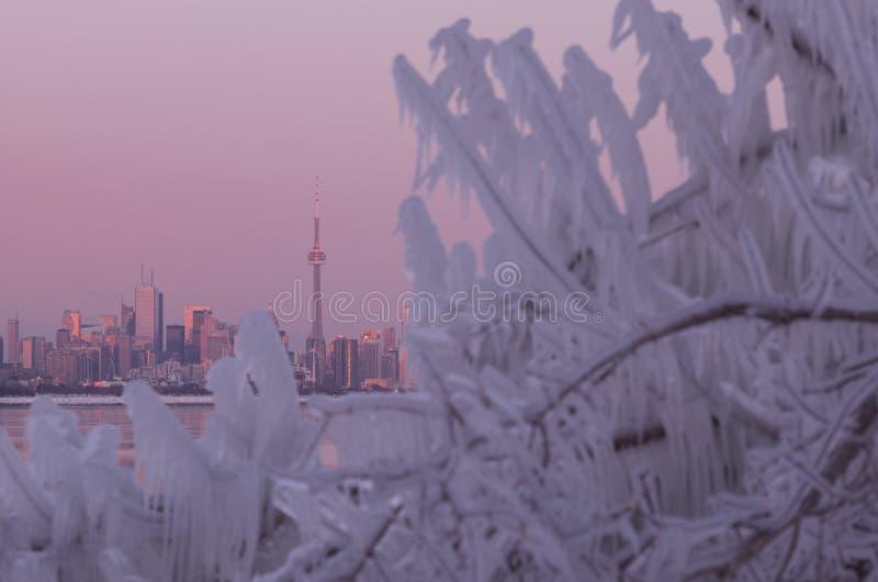 Skyline da cidade de Toronto durante o redemoinho polar do inverno imagem de stock