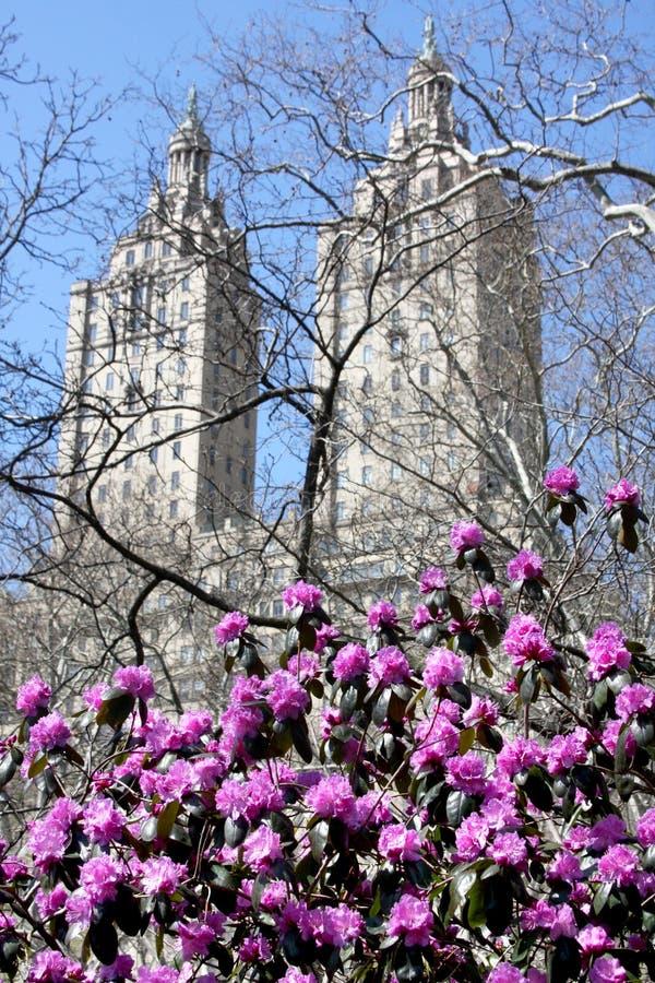 Skyline de Central Park e de Manhattan fotos de stock royalty free