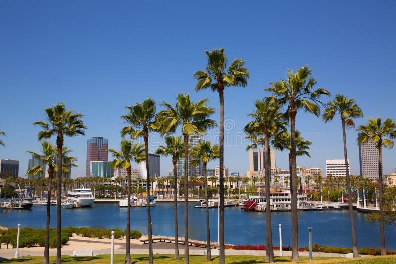 Skyline de Long Beach Califórnia das palmeiras do porto fotografia de stock