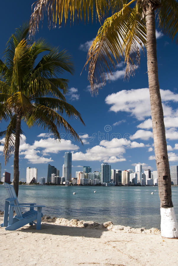 Skyline de Miami imagem de stock royalty free