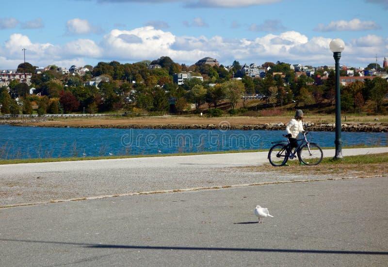 Skyline de Portland, Maine fotografia de stock
