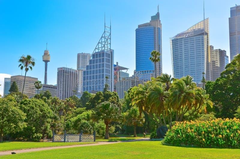 Skyline de Sydney dos jardins botânicos reais em Sydney imagem de stock royalty free