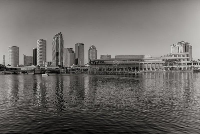 Skyline de Tampa imagem de stock
