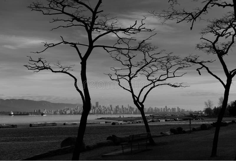 Skyline de Vancôver com ramos de árvore e praia preto e branco foto de stock