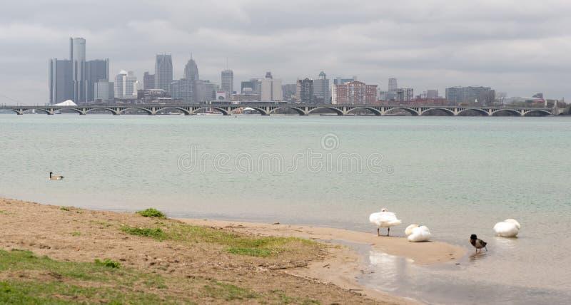 Skyline do centro da cidade do rio panorâmico longo de Detroit Michigan fotografia de stock royalty free