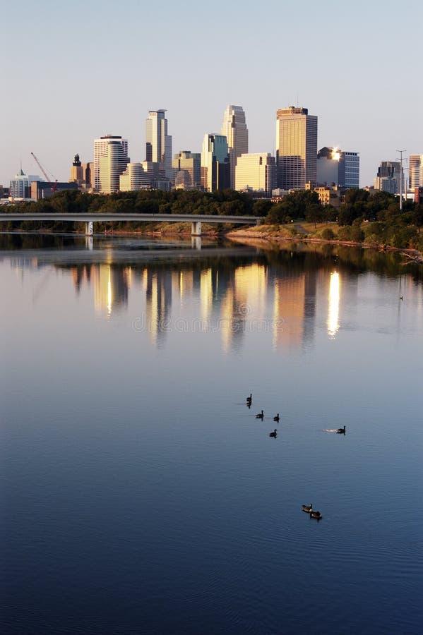Skyline e gansos de Minneapolis imagem de stock
