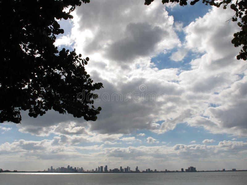 Skyline im Stadtzentrum gelegenen Miamis, Florida stockfotos