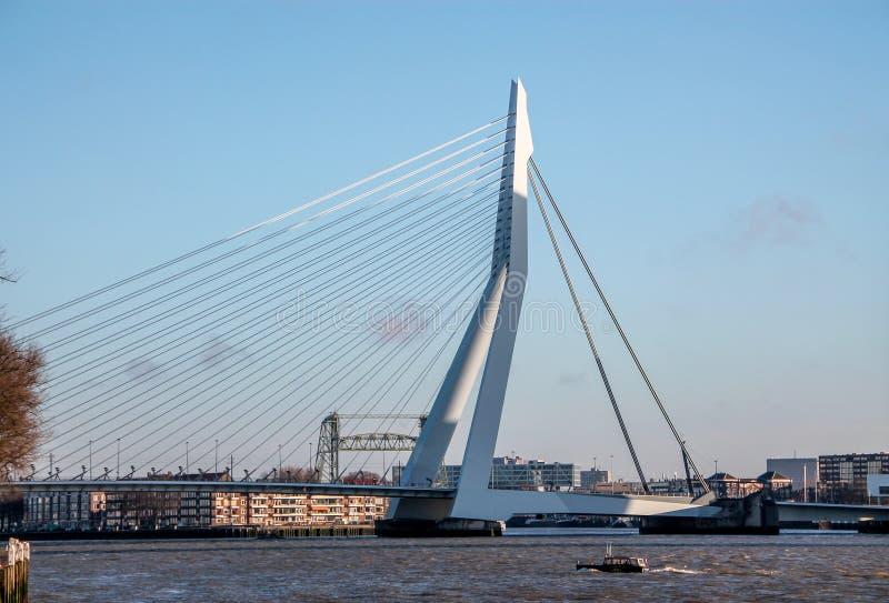 Skyline of Rotterdam, Erasmus bridge stock photography