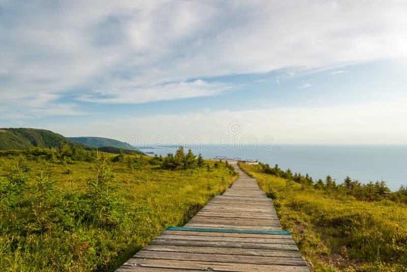 Skyline Trail boardwalk. (French Mountain, Cape Breton, Nova Scotia, Canada stock image