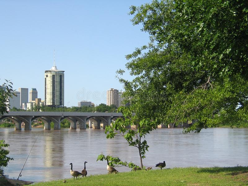 Tulsa Oklahoma from the west bank of the Arkansas River with baby geese and a fishing pole royalty free stock photo