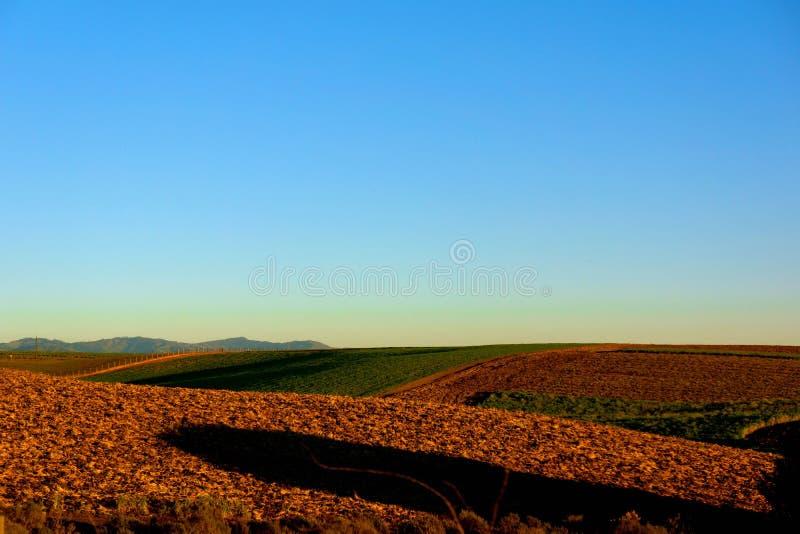Skyline vazia sobre campos de exploração agrícola na paisagem de Rolling Hills fotos de stock
