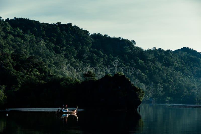Skymning i mangroveskogen, sikt från fartyget royaltyfria bilder