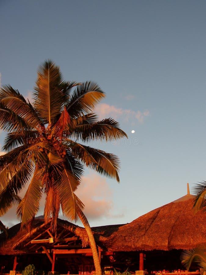 skymning seychelles arkivbild