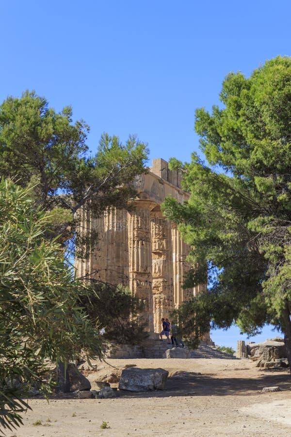 Skymt av den grekiska templet E på Selinus i Selinunte - Sicilien, Italien royaltyfri foto