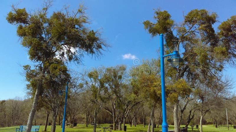 Skys azuis imagem de stock royalty free