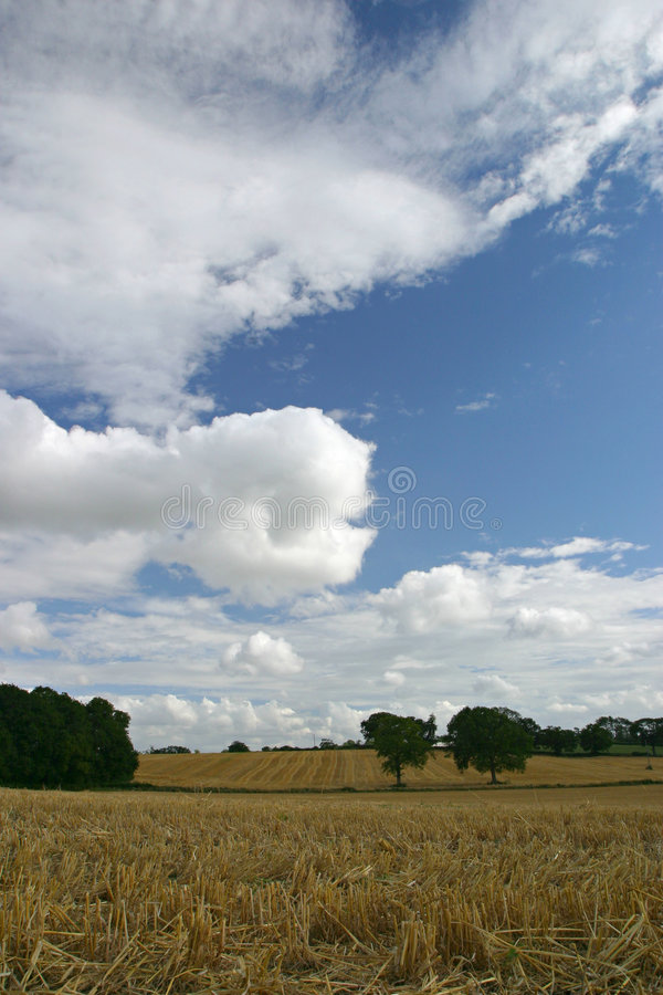 Download Skyscape 1 image stock. Image du campagne, pays, zones, angleterre - 64503