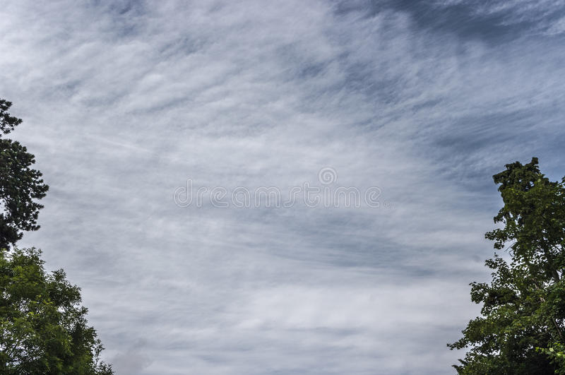 Skyscape with light clouds and trees edge of frame royalty free stock image