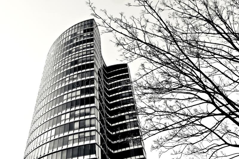 Skyscraper in black and white royalty free stock images