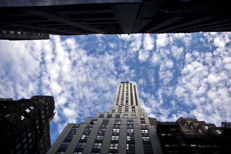 Download Skyscraper Building Royalty Free Stock Image - Image: 26107756