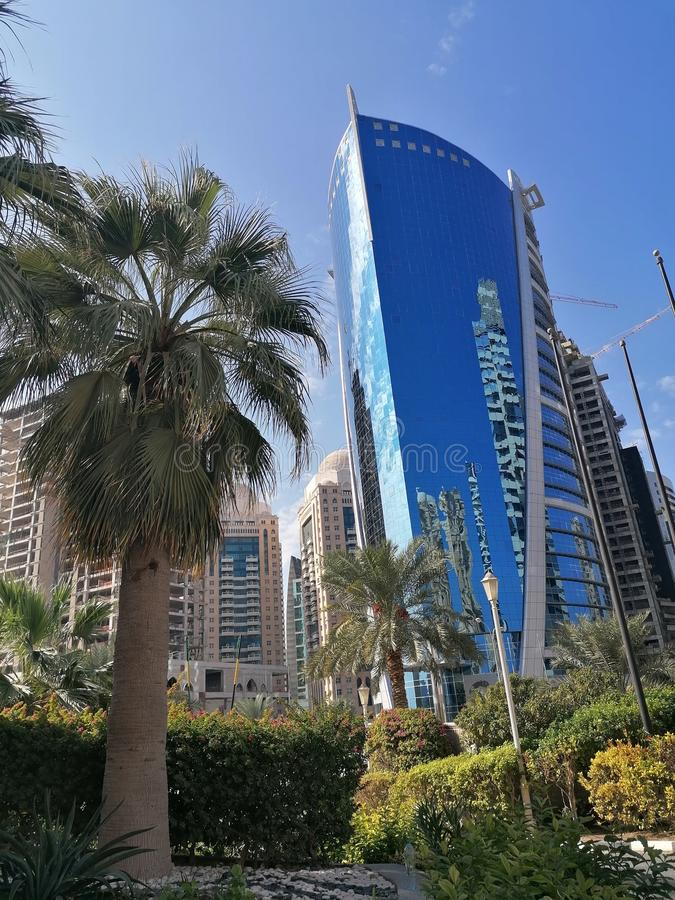 Skyscraper and palm trees, Doha City, West Bay, Qatar. Blue, modern, green stock photos