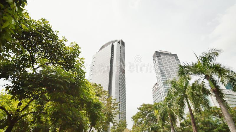 Skyscrapers against the backdrop of palm trees. Shooting in motion. Makati District in Manila. Philippines. Makati District in Manila. Philippines royalty free stock photography